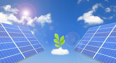 solar panel and a green tree Stock Photo - 11298393