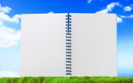 Open blank note book on green grass with cloud sky Stock Photo - 12527544