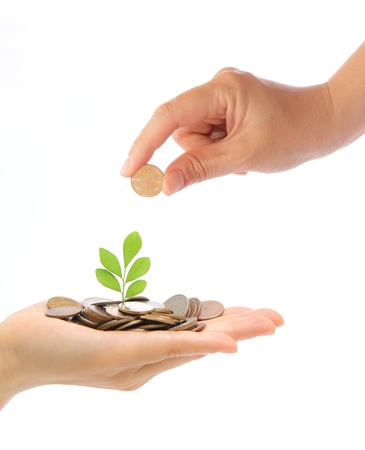nt: Hand and green plant growing from the coins. Money financial concept.