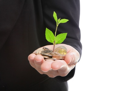 growing business: business man hand with a green plant growing from pile of money coins, concept for finance