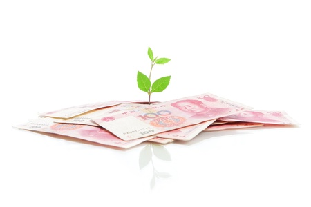 commercial tree care: Green plant leaf growing on money (China money) isolated on white background Stock Photo