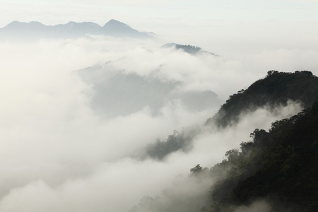 national forest: mountains with trees and fog shot in taiwan, formosa, asia Stock Photo