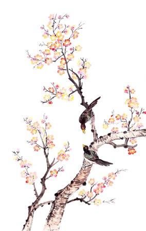 La pintura china tradicional de las flores, flor del ciruelo y dos pájaros en los árboles, fondo blanco.