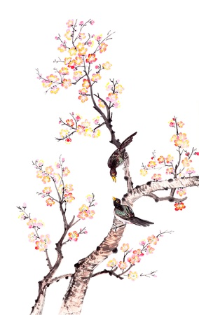 china art: Traditional Chinese painting of flowers, plum blossom and two birds on tree, white background.