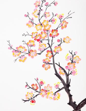 cerezos en flor: La pintura tradicional china de las flores, flor del ciruelo de cerca el fondo blanco