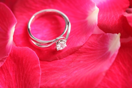 Diamond ring with red rose flower petal Stock Photo - 19307297