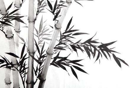 japones bambu: hojas de bambú, arte de la caligrafía china tradicional aislada sobre fondo blanco.