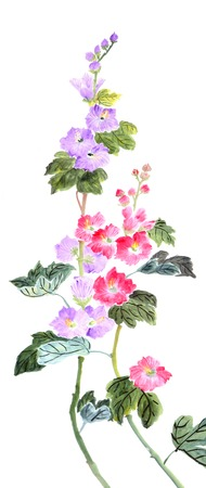 traditional Chinese painting ,peony photo