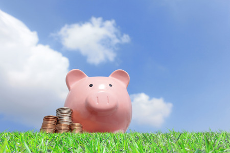Een roze spaarvarken en geld met hemelachtergrond Stockfoto