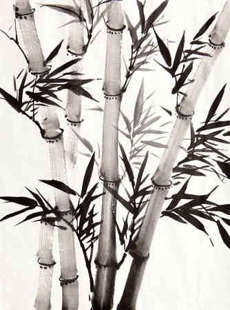bamboo tree: bamboo leaf , traditional chinese calligraphy art isolated on white background  Stock Photo
