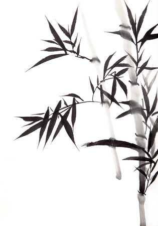 tree drawing: bamboo leaf , traditional chinese calligraphy art isolated on white background  Stock Photo