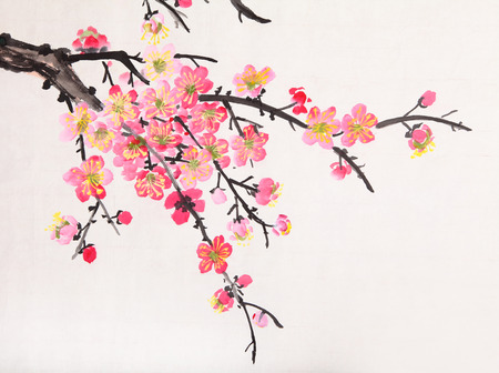 plum: Traditional Chinese painting of flowers, plum blossom close up white