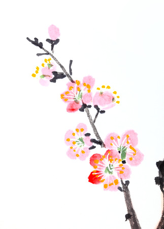 Traditional Chinese painting of flowers, plum blossom close up white  photo