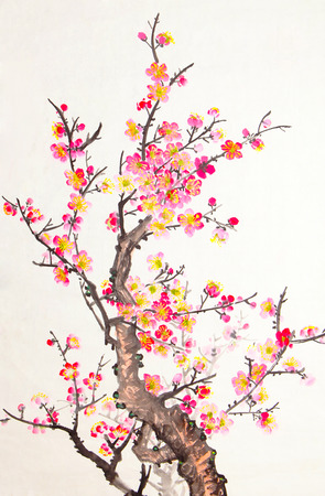 Traditional Chinese painting of flowers, plum blossom close up white background photo