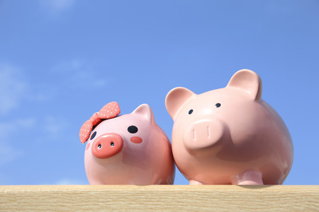 Pink piggy bank couple with blue sky, great for business and family concept