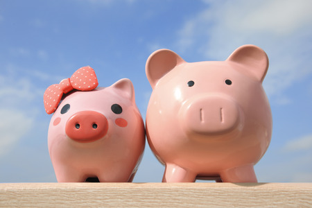 family budget: Pink piggy bank couple with blue sky, great for business and family concept