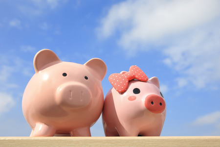 wealth concept: Pink piggy bank couple with blue sky, great for business and family concept
