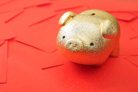 Haapy chinese new year - Golden piggy bank with red envelope background photo