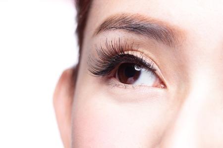 ojo humano: Ojo de la mujer hermosa con largas pesta�as. modelo asi�tico
