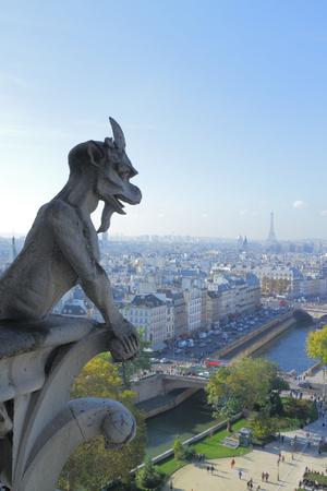Luchtfoto van Parijs stad Eiffeltoren en rivier de Seine neergeschoten op de top van de Notre Dame kathedraal met stenen demon gargoyle Stockfoto