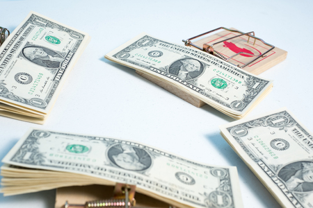 american dollars in mouse trap for your concept Stock Photo