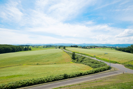 beautiful landscape of asahikawa town in summer Stock Photo