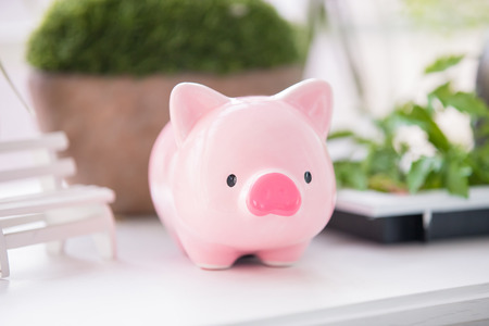 close up of cute pink piggy bank