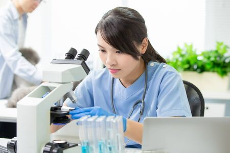asian young femalie veterinarian check illness with microscope 版權商用圖片