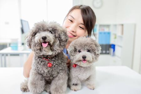 close up of young female veterinarian doctor and dogs look to you happily