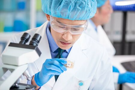 close up of asian scientist team conduct an examination about soybean in the laboratory