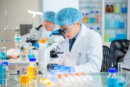 asian scientist team has researching about food and egg in the laboratory