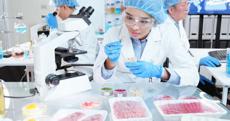 asian scientist team has researching about soybean in the laboratory