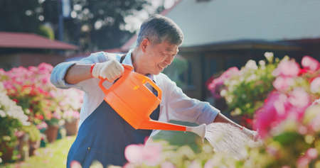 Authentic shot of asian retired senior man watering plants in the garden