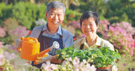 Authentic shot of asian retired senior man is watering plants with his wife in the garden