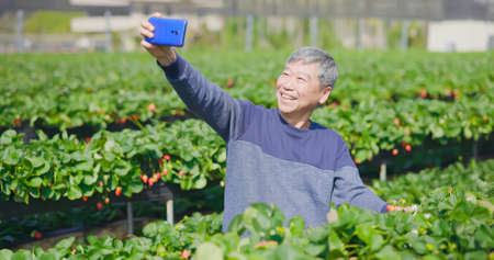 agriculture technology concept-successful asian senior male agronomist take selfie with his crop and greenhouse