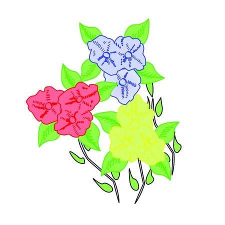 Colourful Illustrated Flowers Vector