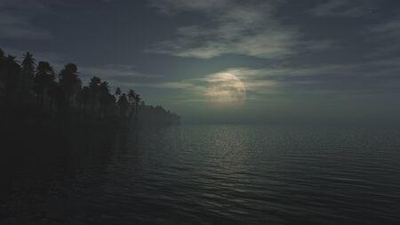 Moonlight Night on the Tropical Beach, Moonlight above the ocean. 3D render