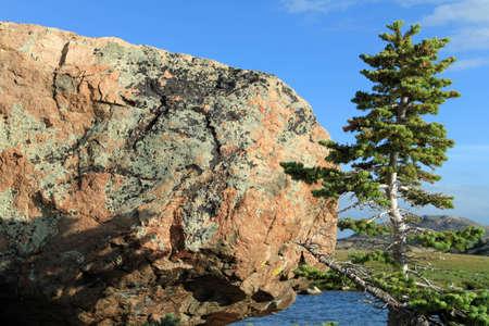 meets: pine meets rock overlooking lake