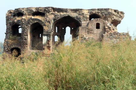 growth and temple abandoned site with ruins left for walls photo