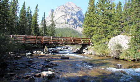 remoteness: Quaint old wooden bridge across a scenic mountain stream with forested banks and a view through to a high mountain peak