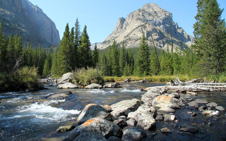 remoteness: Fast flowing scenic rocky mountain stream below a towering mountain peak in forested countryside Stock Photo