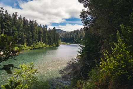 A river flowing through a forest. Stock Photo