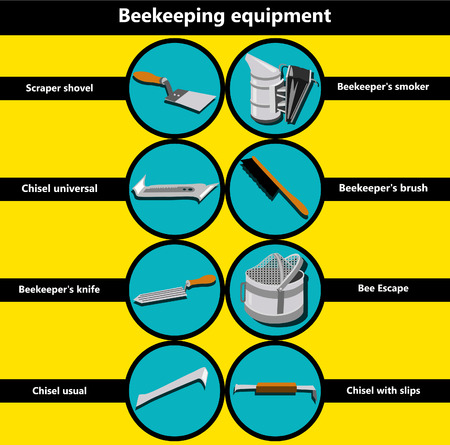 beekeeping: Information poster containing beekeeping equipment made in a flat style