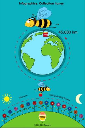 Infographics with the poster containing information on that how many a bee flies by kilometers to collect 100 grams of honey. With what speed flies, how many flowers pollinate. Illusztráció