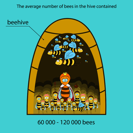 beehive: The information poster containing information on that how many bees lives in a beehive.  Illustration