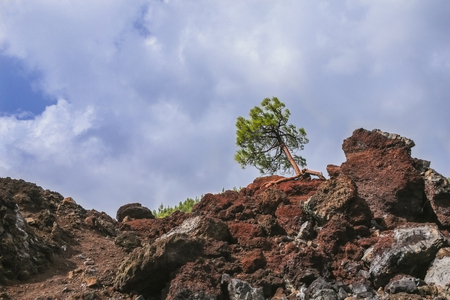 hardened: The hardened lava of the volcano on the background of blue sky. Stock Photo