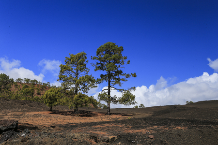 The hardened lava of the volcano on the background of blue sky. photo