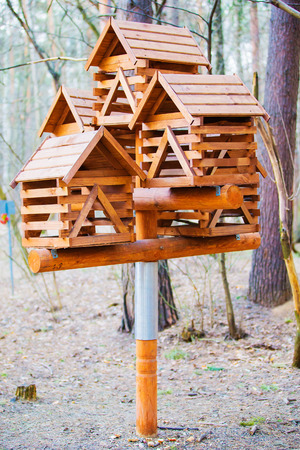 feeders: Feeders for birds and squirrels in the Woods.
