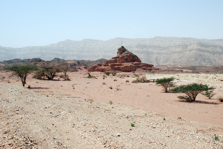 arava: Timna national geological park (Israel) Stone desert and rocks landscape of Timna.