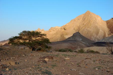 Timna national geological park (Israel) The Mushroom and the half sandstones in the Negev desert